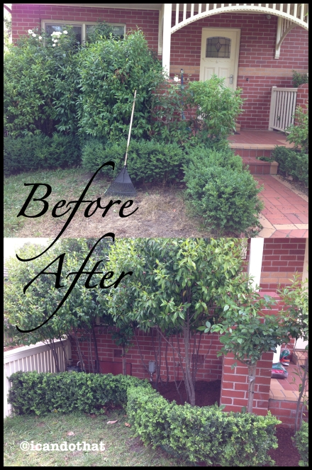 beforeafter2 copy