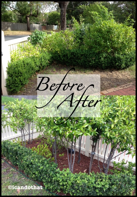 beforeafter3 copy