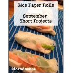 Vietnamese Style Rice Paper Rolls