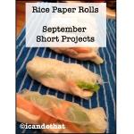 Vietnamese Style Rice Paper Rolls