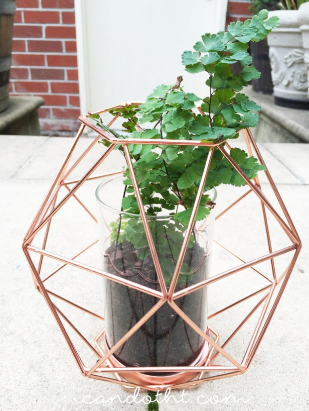 DIY geometric hanging fern planter