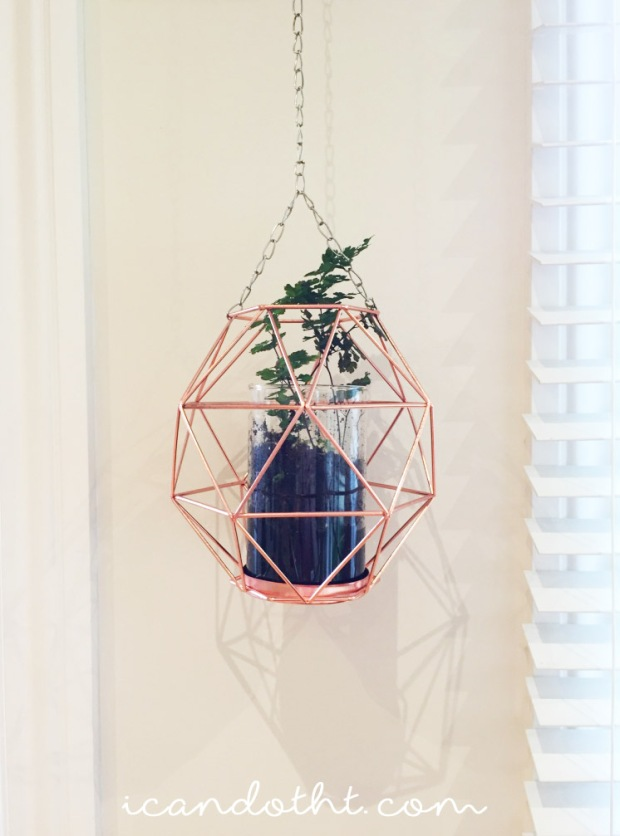 DIY hanging fern planter