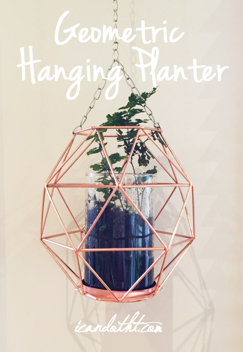 Geometric Hanging Planter DIY