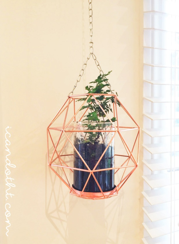 Hanging fern planter